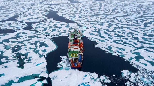 Un navire entre les glaces.