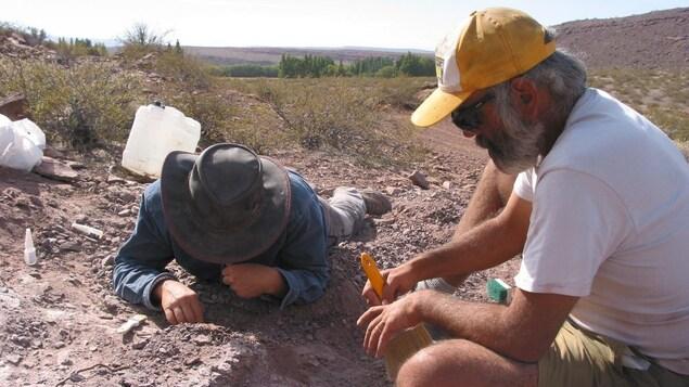 Des chercheurs en paléontologie creusent le sol.