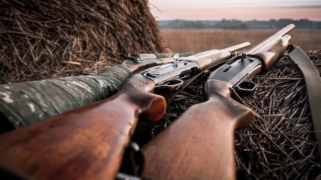 Des armes d'épaule sont déposées sur du foin.
