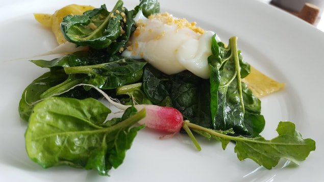 Une assiette sur laquelle des légumes sont posés. On peut notamment voir un radis, parmi les nombreuses feuilles.