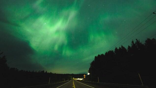 Des aurores boréales au-dessus d'une route.