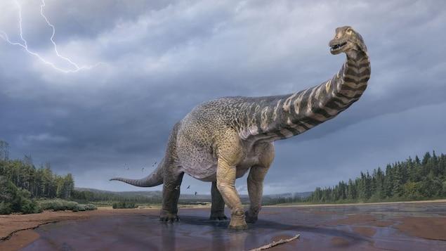 Représentation artistique d'un dinosaure au long cou se tenant au milieu d'une rivière.