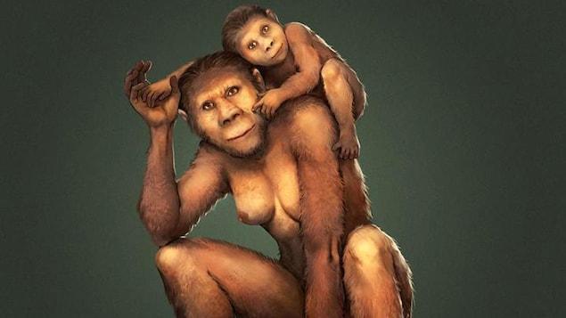 Illustration montrant une mère australopithèque et son bébé.
