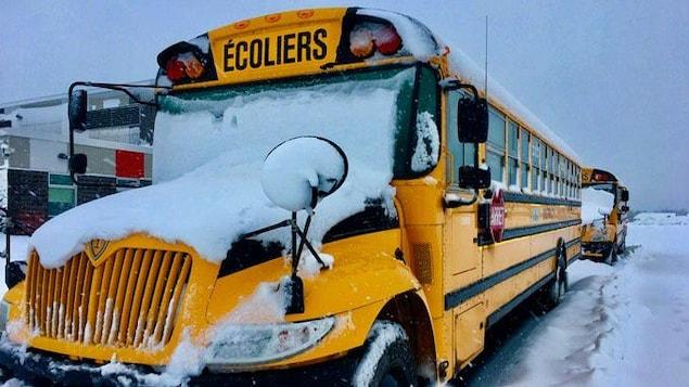 Des autobus scolaires recouverts de neige fraîche.