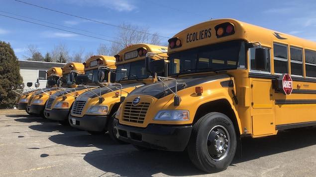 Cinq autobus scolaires stationnés côte à côte.