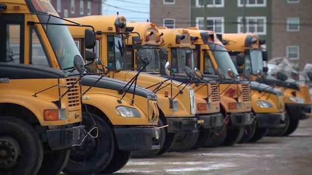 Gros plan sur six autobus scolaires garés côte à côte