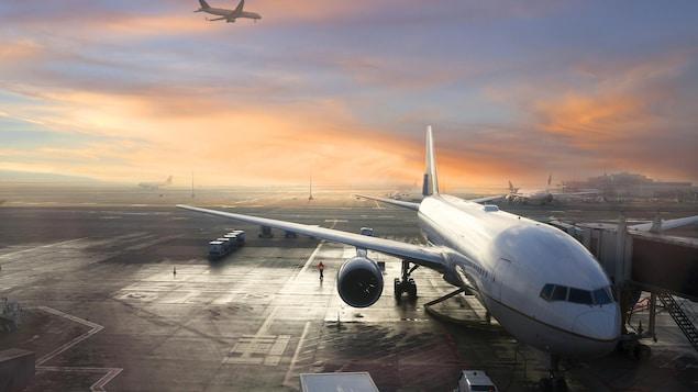 Des avions à l'aéroport de Bruxelles en Belgique.