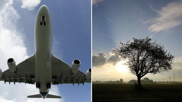Un montage photo montre un gros avion de ligne commercial en vol et un arbre dans un champ près d'une centrale au charbon du fournisseur d'électricité Uniper à Hanau.