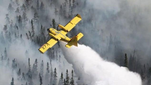 Un avion bombardier survole une forêt en y jetant une importante quantité d'eau.