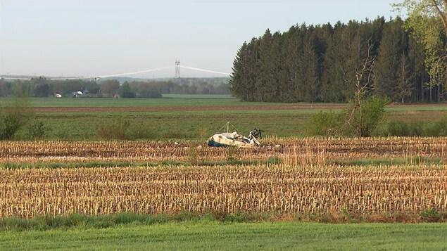 Une carcasse d'avion au cœur d'un champ à l'aube.