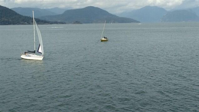 Des voiliers sur la baie Howe, en Colombie-Britannique