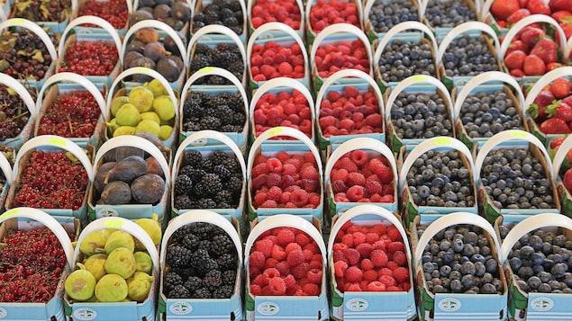 Un étal de fruits au Marché Jean-Talon.