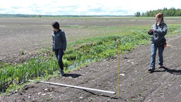 On voit les inspectrices qui ont placé leur ruban à mesurer au sol, de façon perpendiculaire au cours d'eau. Le champ labouré se rend presque jusqu'au cours d'eau, sans laisser de place à la bande riveraine.