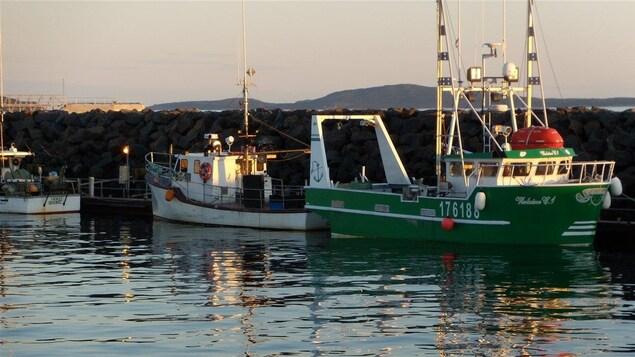 Bateaux de pêche à Sept-Îles