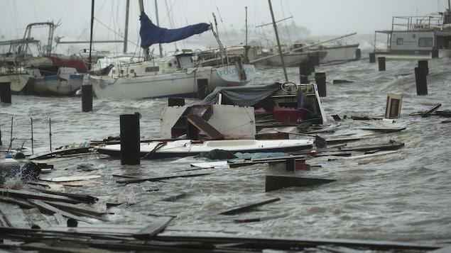 Des bateaux endommagés dans une marina.