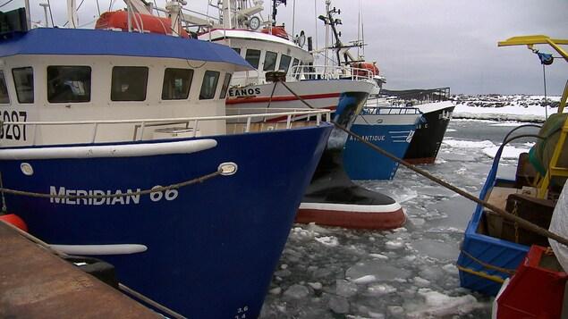Bateaux de pêche aux crevettes à Rivière-au-Renard