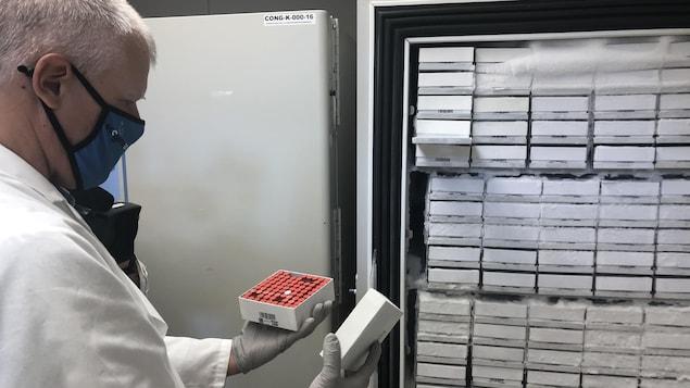 Un microbiologiste montre une boîte contenant des dizaines d'échantillons.