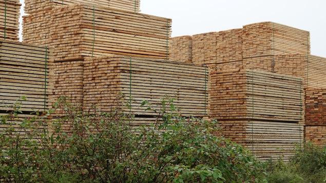 Des piles de bois d'oeuvre sont empilées derrière des arbustes.