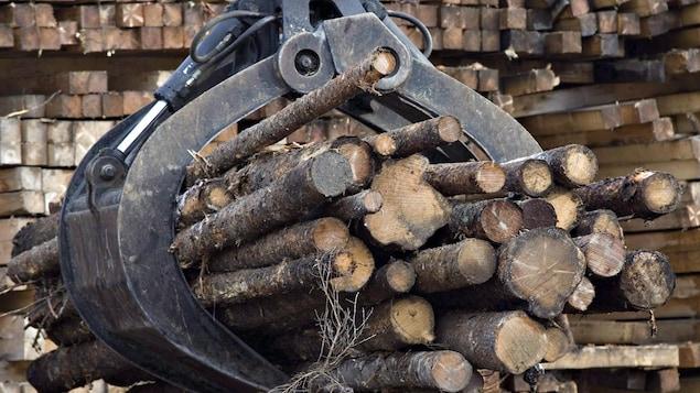 Des billots de bois sont déplacés à l'aide de machinerie à Saguenay, au Québec, en novembre 2008.