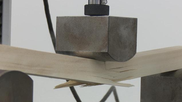Une machine teste la solidité du bois