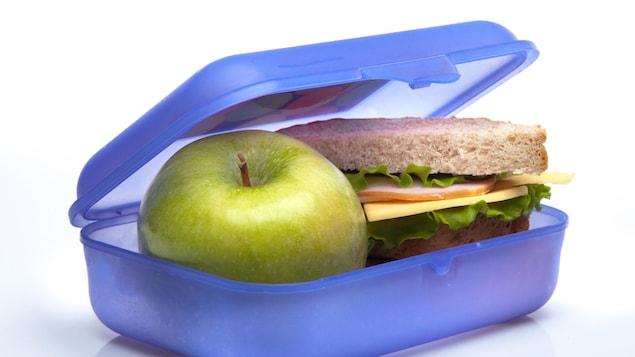 Elle contient un sandwich et une pomme