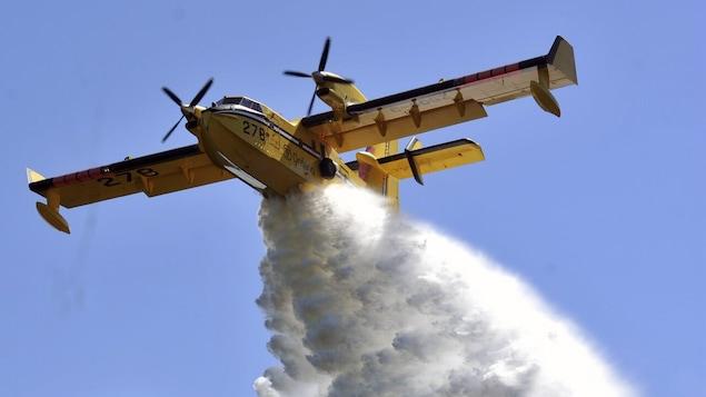 Un avion jetant de l'eau au-dessus d'une forêt.