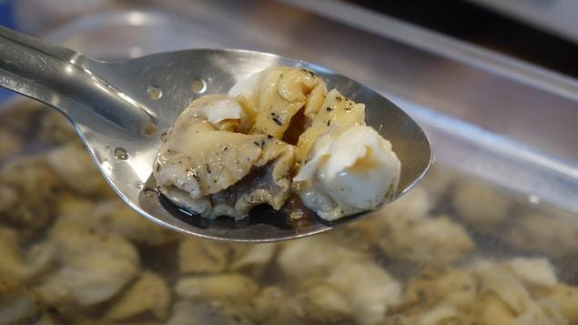 Des bourgots aussi connus sous le nom de buccins dans une cuillère.