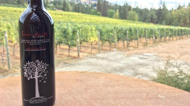 Une bouteille de vin sur une table avec des vignes en arrière-plan