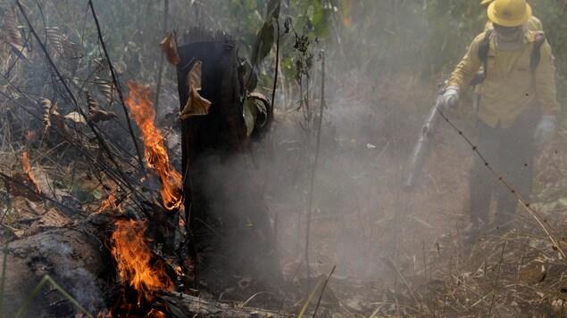 Des pompiers éteignent un incendie dans la jungle amazonienne de Porto Velho, au Brésil, le 25 août 2019.