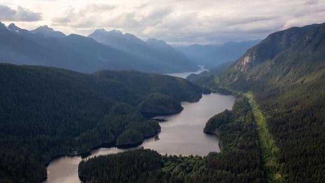 Un lac entouré de montagnes et d'arbres