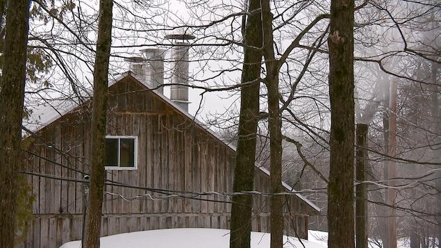 Une cabane à sucre en hiver