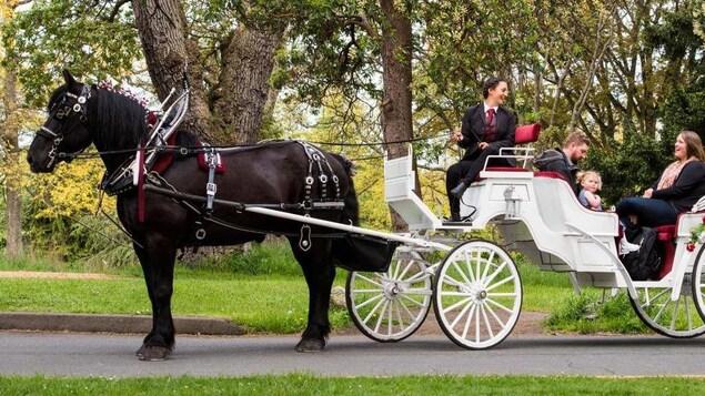 Une cochère discute avec des clients à bord d'une calèche tirée par un cheval.