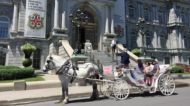 Une calèche devant l'hôtel de ville de Montréal
