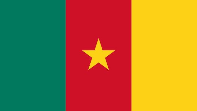 Le drapeau du Cameroun avec les trois bandes de différentes couleurs et une étoile au milieu.