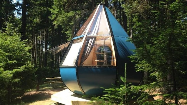 Un dôme vitré de camping au milieu de la forêt.