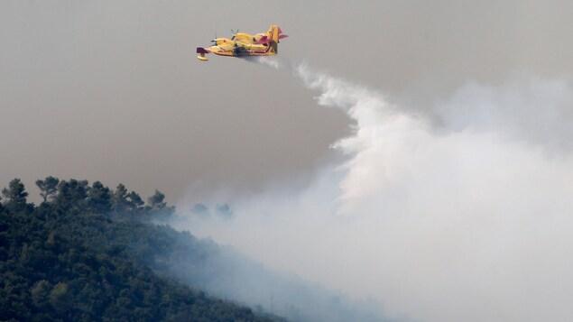 Un canadair largue sa cargaison d'eau sur une forêt en flammes.