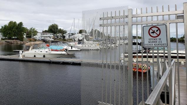 Une marina avec plusieurs bateaux et à l'avant-plan, il y a une affiche qui indique qu'il est interdit de nourrir les oiseaux aquatiques.