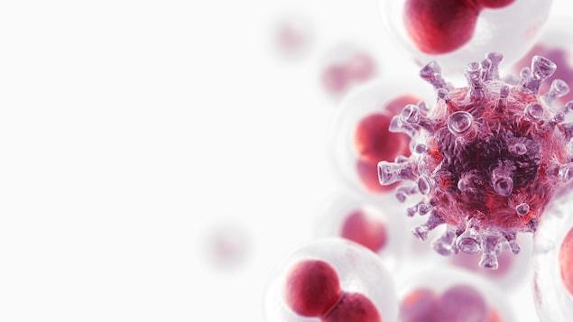 Simulation en trois dimensions d'une cellule cancéreuse.