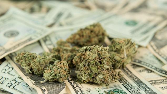 De la marijuana sur des billets
