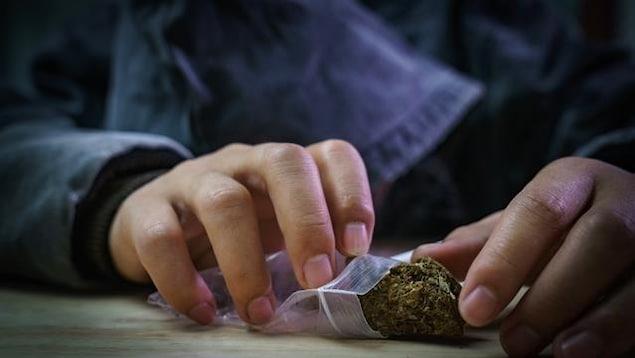 Un jeune tenant un petit sac en plastique rempli de cannabis.