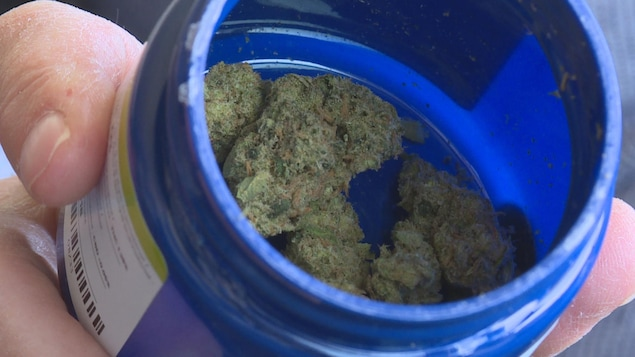 Une boîte de cannabis médicinal ouverte avec de l'herbe à l'intérieur.