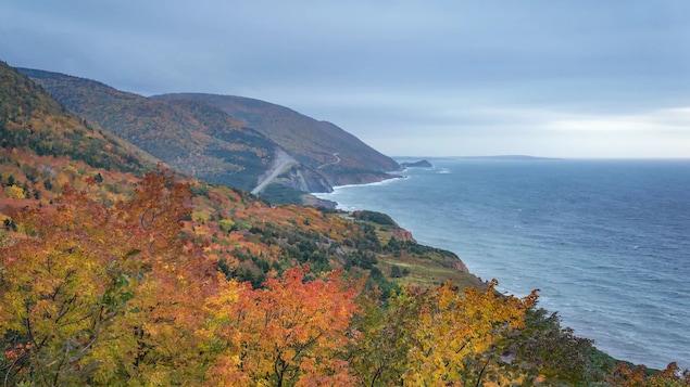 Une photo des couleurs d'automne le long de la piste Cabot, au Cap-Breton.