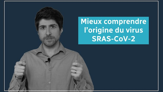 Mieux comprendre l'origine du virus SRAS-CoV-2