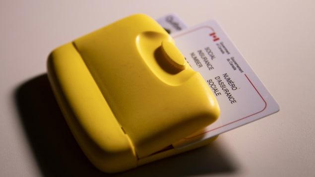 Un porte-carte contenant notamment une carte d'assurance sociale et un permis de conduire.