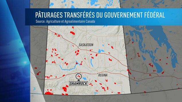 Le gouvernement fédéral a transféré des pâturages lui appartenant au gouvernement de la Saskatchewan