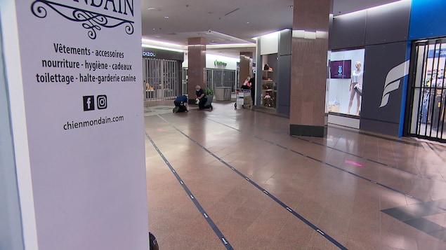 Deux personnes installant des ligne sur le plancher d'un centre commercial.