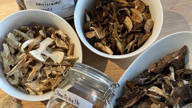 Des chanterelles et des armillaires séchés, issus de la cueillette de champignons sauvages de notre collaborateur, le chef de Métis-sur-mer Pierre-Olivier Ferry.