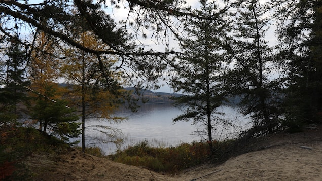 Du sable, des arbres et un lac au fond.