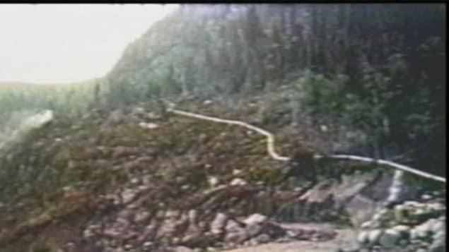 Image d'archives du mythique chemin de fer serpentant dans la forêt