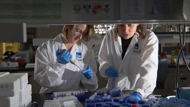 Deux femmes dans un laboratoire de recherche